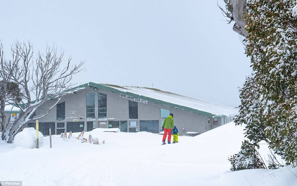 4D5BD1C500000578-5855295-Due_to_the_amazing_snow_conditions_Perisher_is_opening_some_of_t-a-26_1529304351158